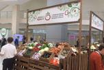 III Международный аграрный форум овощных культур «ОвощКульт2017»