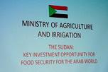 VI заседание Межправительственной Российско-Суданской комиссии по торгово-экономическому сотрудничеству