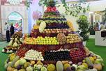 В столице Узбекистана торжественно открылась II международная плодоовощная ярмарка